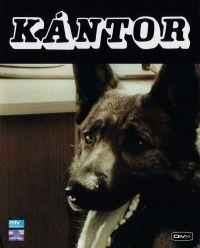 Nemere László - Kántor ( 1-2.) (DVD)