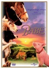 Chris Noonan  - Babe (DVD)
