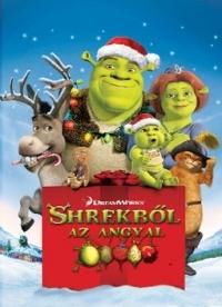 Shrekből az angyal (DVD)