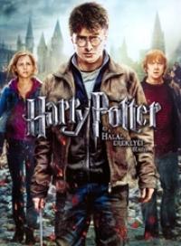 Harry Potter és a Halál Ereklyéi - 2. rész (DVD)