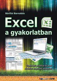 Excel a gyakorlatban /KÖNYV/