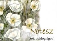 Notesz - Sok boldogságot!