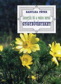 Ismerjük fel a vadon termő gyógynövényeket!