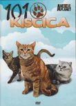 101 Kiscica - Cats 101 (DVD)